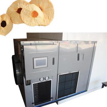 Industrial Medium Temperature Double Door Vegetable Fruit Food Dryer Machine