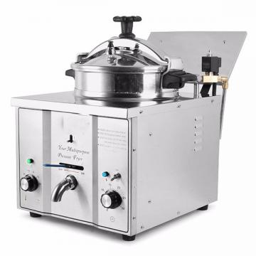 Industrial 5.5L Temperature Control Large Capacity Oil Less Fat Free Air Fryer with No Oil
