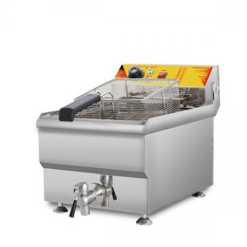 Food Manufacturing Industrial Continuous Batch Gas Fryer for Sale